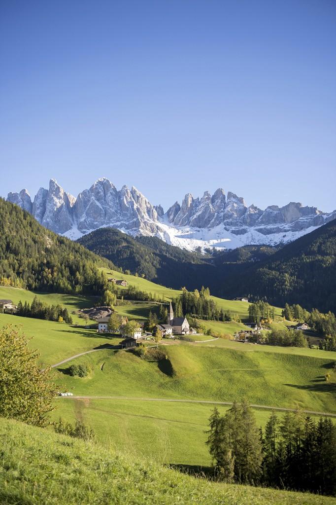 Honig im Kopf Südtirol