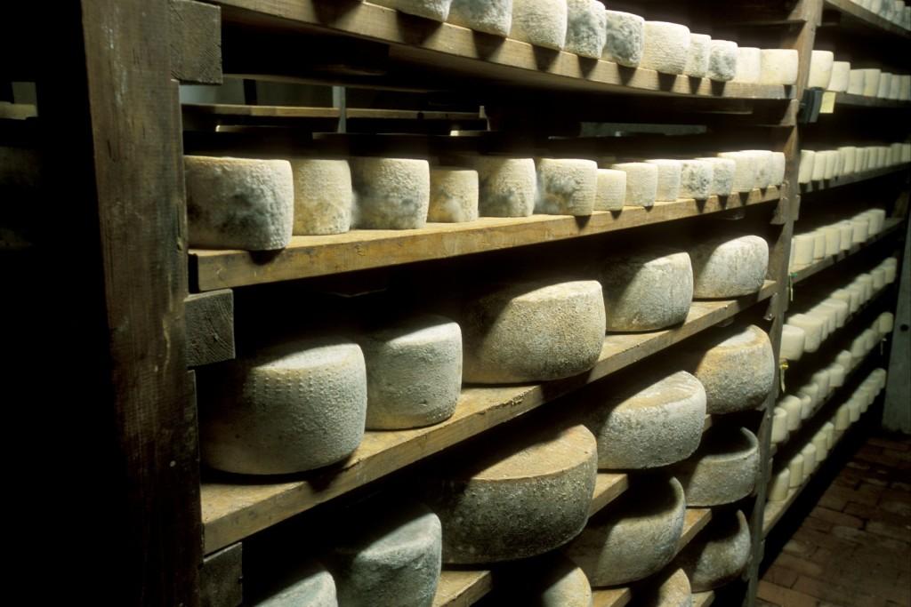 Käse aus dem Hochpustertal